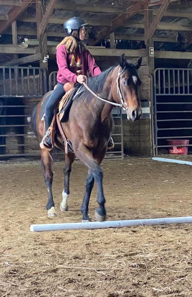 Mesa Terms riding